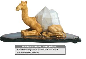 camelo de ouro